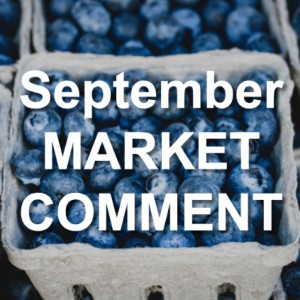 September 2018 Market Comment